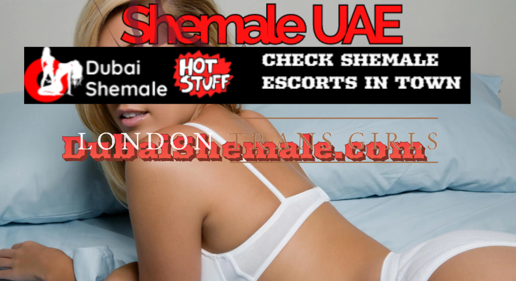 Angelic Experience with A Ladyboy Escorts in UAE